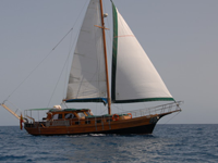 Tocht Paradise Zeilboot  turkse Gulet